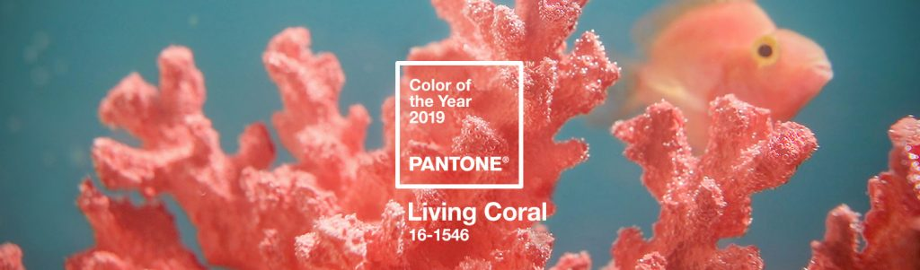 Hottest summer color for 2019 is Pantone's Living Coral.