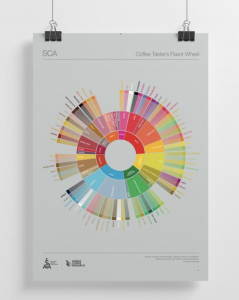 Image of the Coffee Taster's Flavor Wheel by the Specialty Coffee Association